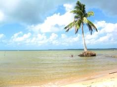 Awas Beach View