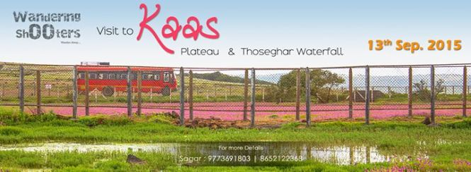 Visit Kaas Plateau and Thoseghar Waterfalls
