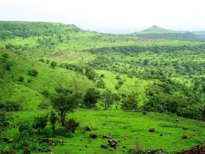 Lavale Hills